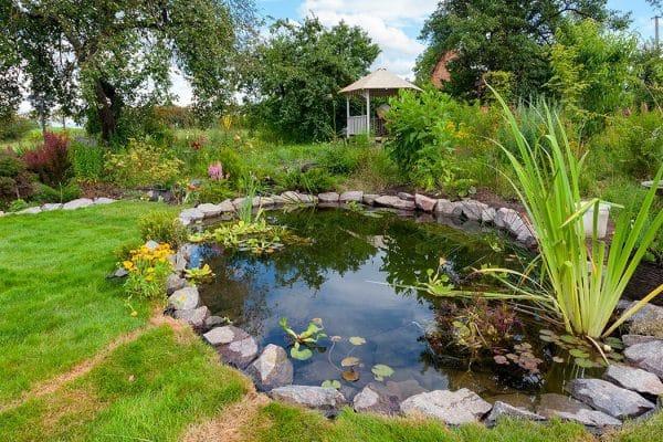 Jardins Cascades Bassins, votre spécialiste du bassin de jardin