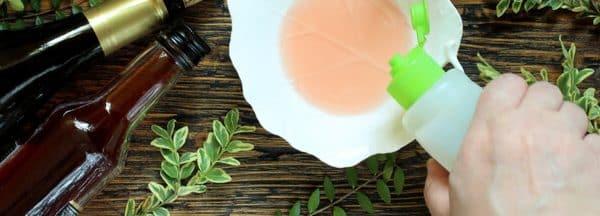 Comment se débarrasser des moucherons avec du vinaigre blanc ?